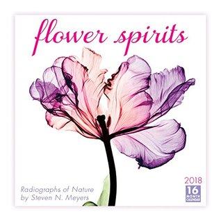 Flower Spirits: Radiographs Of Nature By Steven N. Meyers 2018 Wall Calendar (CA0134)