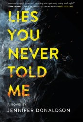 Lies You Never Told Me Pdf Book