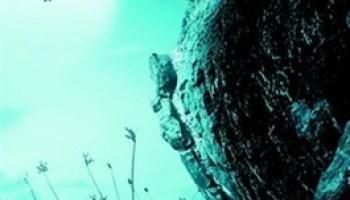 Drakenkruid – Jeroen Vreijling