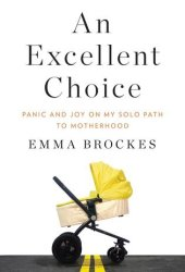 An Excellent Choice: Panic and Joy on My Solo Path to Motherhood Pdf Book