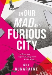 In Our Mad and Furious City Pdf Book