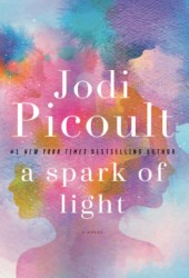 A Spark of Light Book Pdf