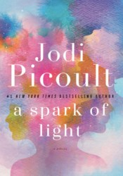 A Spark of Light Pdf Book