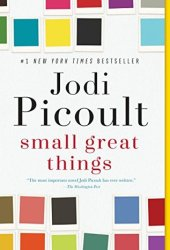 Small Great Things Pdf Book