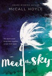 Meet the Sky Pdf Book