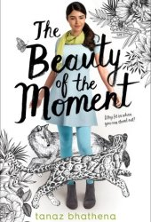 The Beauty of the Moment Pdf Book