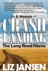 Crash Landing: The Long Road Home