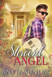Shrewd Angel Pdf Book
