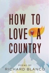 How to Love a Country Pdf Book