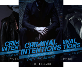 Criminal Intentions (13 Book Series)