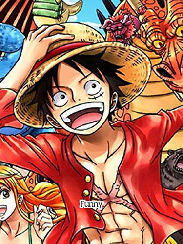 The Funniest Onepiece Memes - Amazing Book Collection