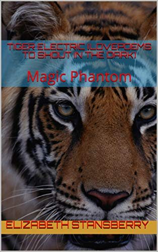 TIGER ELECTRIC (Lovepoems to shout in the dark): Magic Phantom