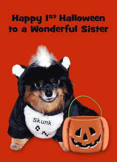 1st Halloween to Sister, Pomeranian in Skunk costume on orange Greeting Card
