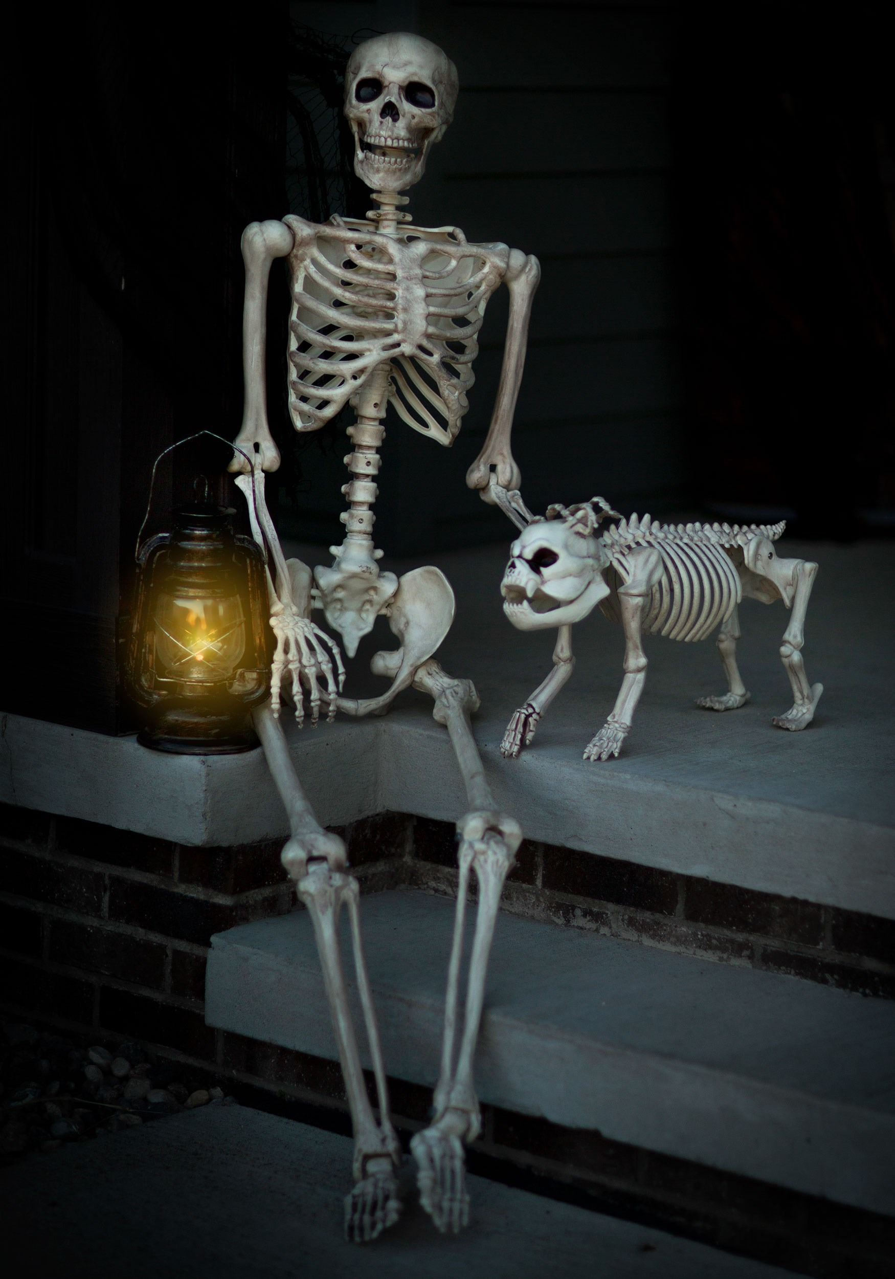Life Size Poseable Human Skeleton