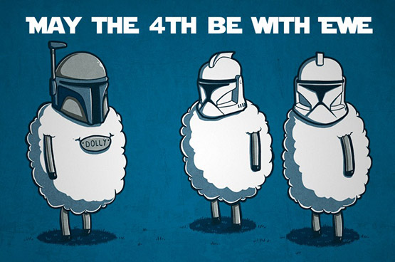 May the Fourth Be With Ewe