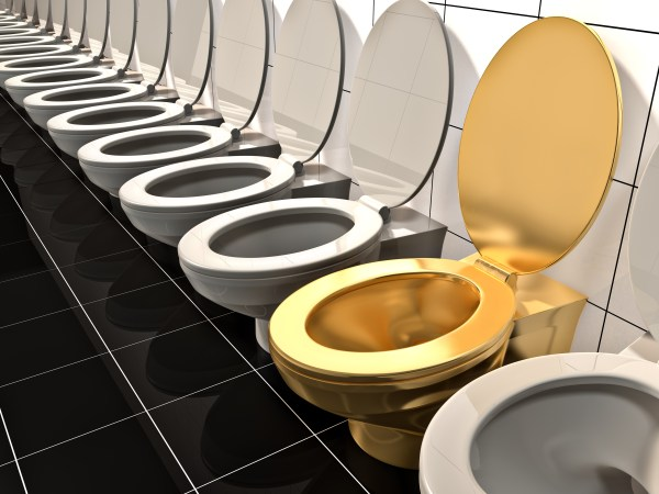 Would you use an 18 karat gold toilet? What if it was as ...