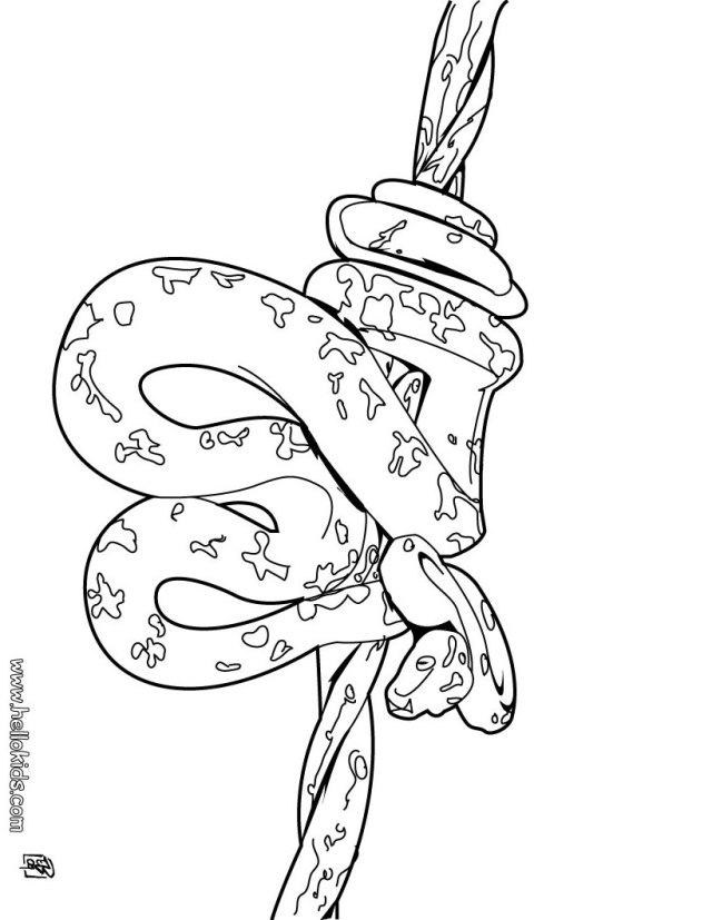 Amazonian tree boa coloring pages - Hellokids.com