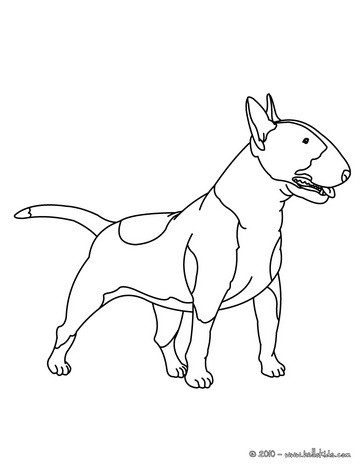 dachshund coloring pages # 79