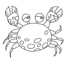 Sea Animals Coloring Pages 111 Sea Animals And Sea Creatures Coloring Pages Children Favorite Ocean Animals To Color In And Print Out