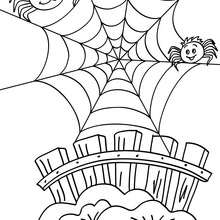 spider web coloring page # 48