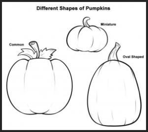How to draw how to draw pumpkins  Hellokids