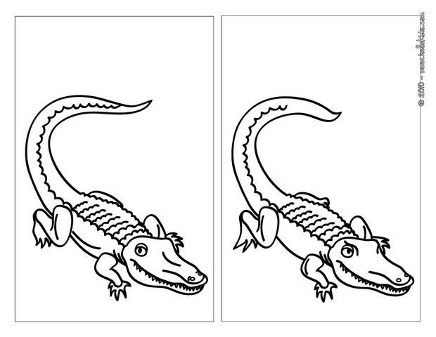 Crocodile Online Games