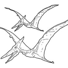 pterodactyl coloring page # 1