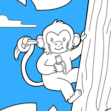 Jungle Animals Coloring Pages 23 All The Wild Animals Of The World Coloring Pages Jungle Animals Online Coloring Book For Kids