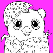 Hatchimals Coloring Pages Coloring Pages Hellokids Com