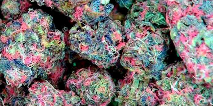 Is Pink Weed 2 7 Ways To Smoke Weed In Your Apartment On The Sly