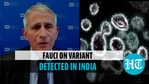 US top medical expert spoke on Covid vaccines against the B.1.617.1 variant