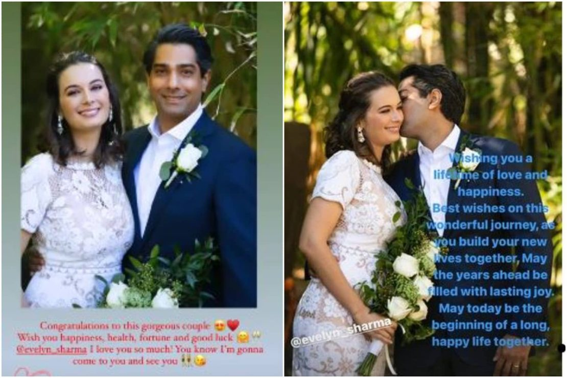 Evelyn Sharma and Tushaan Bhindi's friends sent in their congratulatory messages.