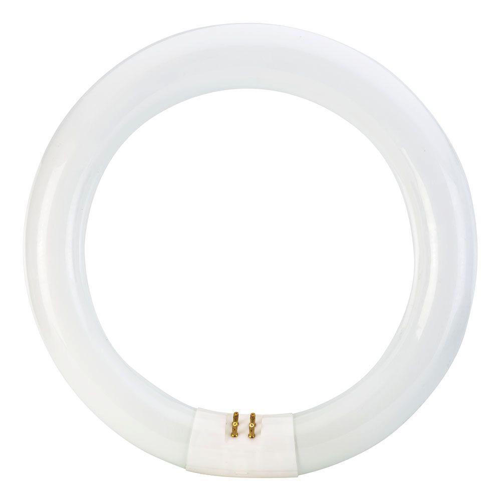 Circle Light Bulbs