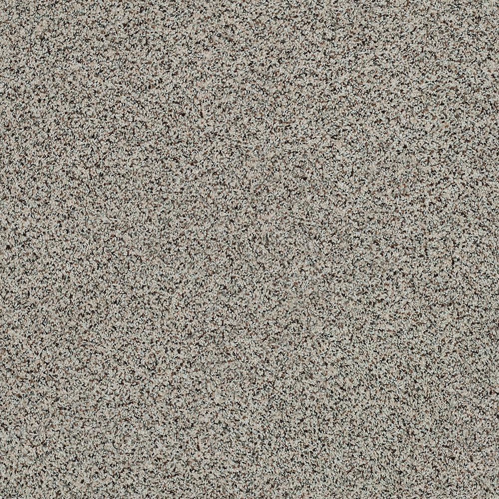 Platinum Plus Carpet Sample Madeline II Color