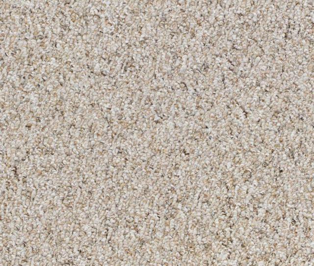 Speeding Color Pebble Path Loop  Ft Carpet