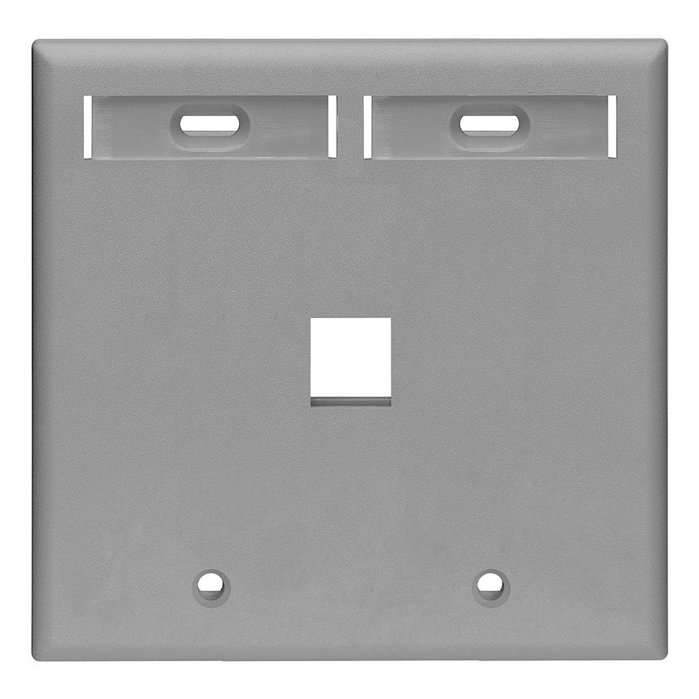 2-Gang Quickport Standard Size 1-Port Wallplate with ID Windows ...