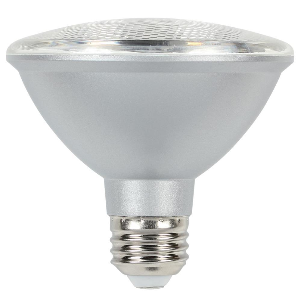 Recessed Light Bulbs Home Depot