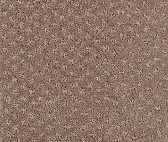 Fast Walk Color Driftwood Loop  Ft Carpet