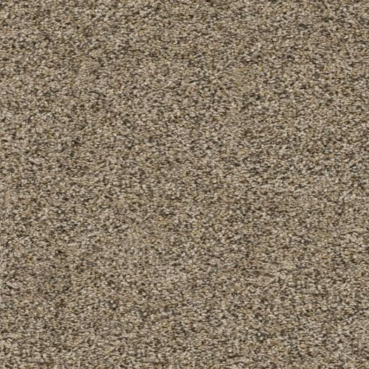 Purecolor Soil Shield Carpet Reviews Lets See Carpet New