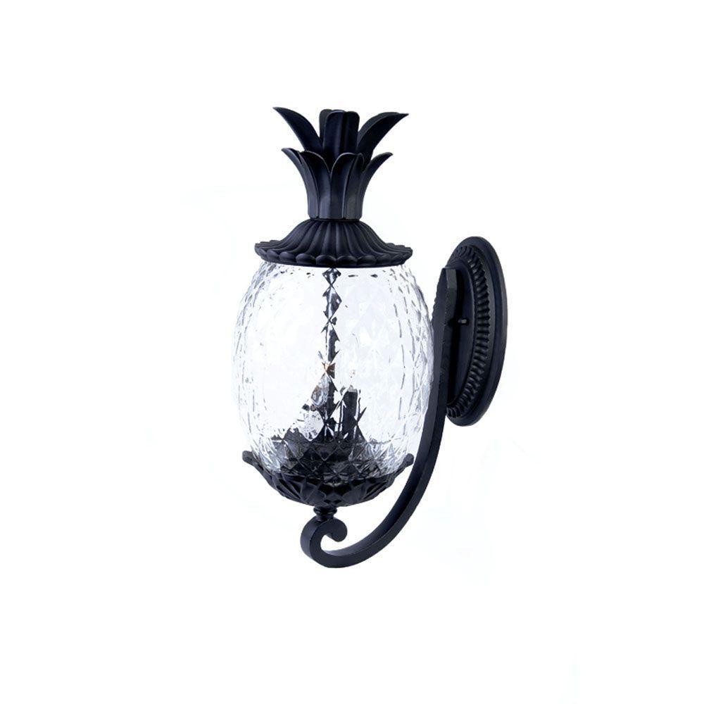 Acclaim Lighting Lanai Collection 2-Light Matte Black ... on Outdoor Lighting Fixtures Wall Mounted id=34960