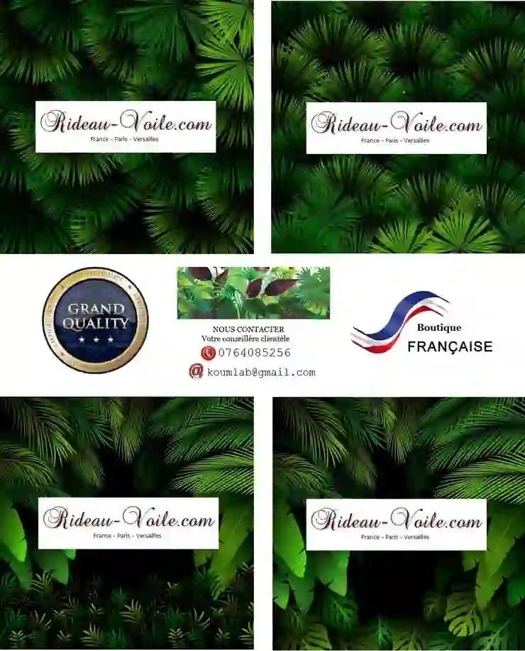 feuilles plantes fleurs faune tropical