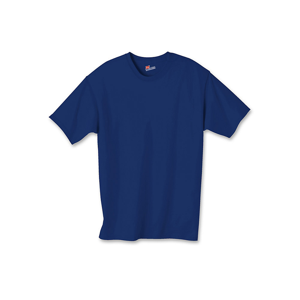 Hanes Authentic TAGLESS Kids Cotton T-Shirt 5450 [from $2 ...