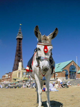 Book a Blackpool B&B at BedandBreakfastworld.com
