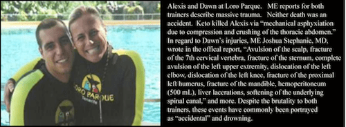2011-01-20-AlexisDawn.png