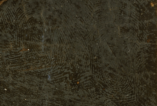 2011-03-09-42Fingerprints.png