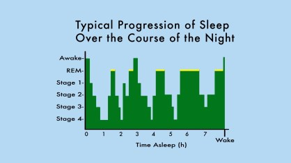2011-05-14-sleepprogressionchart.jpg