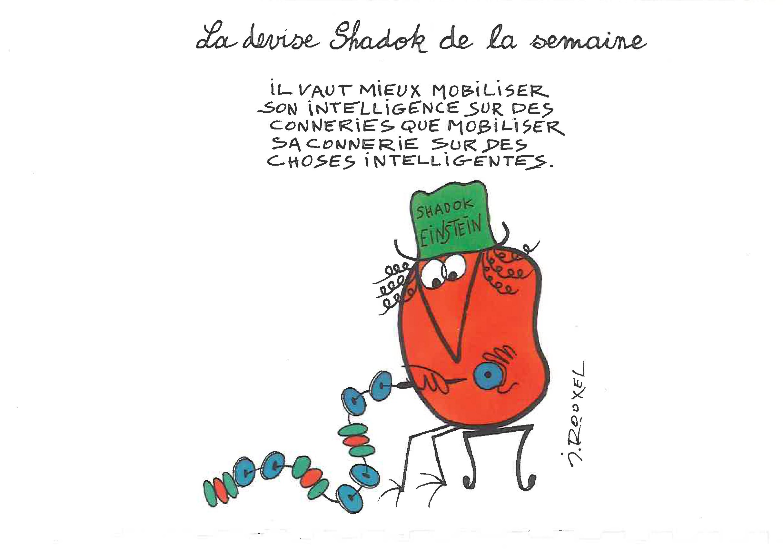 """Résultat de recherche d'images pour """"shadok"""""""