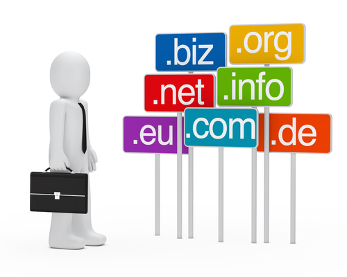 Image result for choosing a domain