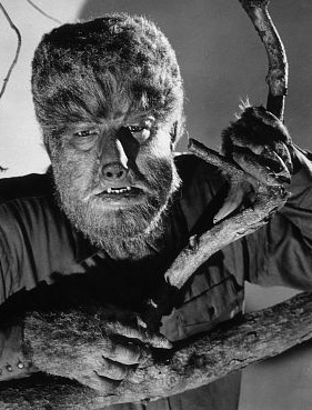 Werewolf Bites 32 Things You Didnt Know About The Hairy
