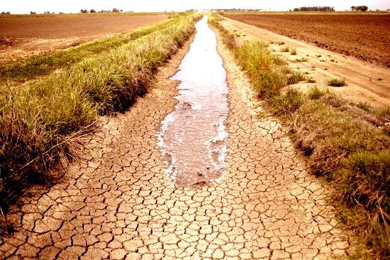 2015-11-03-1446577362-5253890-droughtirrigationaaditchinCAAPphotoJaeCHongccr237.jpg